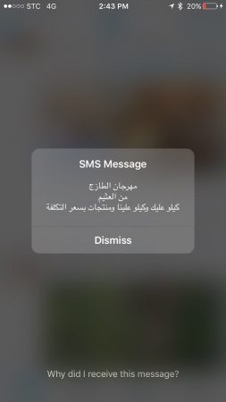 flash_sms_spam_1