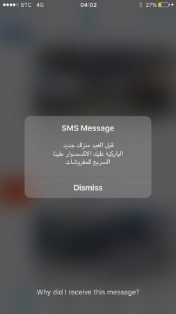 flash_sms_spam_4